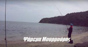 Ψάρεμα Μουρμούρας