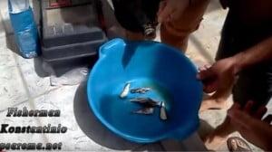 Κατασκευή δολώματος για Ψάρεμα απίκο ή πεταχτάρι