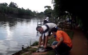 Ψάρι Χαστουκίζει ψαρά