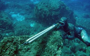 Αντιδρούν οι περιβαλλοντικές ΜΚΟ για την κατάργηση της άδειας αλιείας