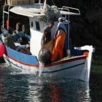 Χρυσωρυχείο παράνομου ψαρέματος το Άγιο Ορος