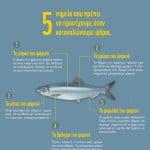 Ψάρια: τι να προσέχουμε όταν τα καταναλώνουμε