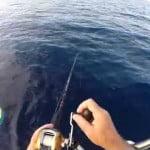 Ψάρεμα συρτοκαθετής