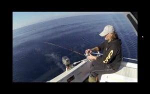 Ψάρεμα συναγρίδας με μολύβι φύλακα