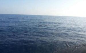 Τρεις νεκροί σε ναυάγιο ψαράδικου στην Ερμιόνη