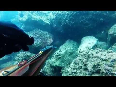 ψαροντούφεκο 2015 - spearfishing 2015
