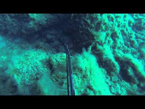 Ψαροντούφεκο - Spearfishing - Στήρα .