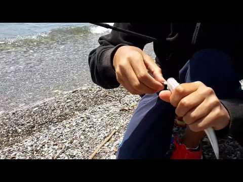 Ψάρεμα λαβράκι-Catch and Release