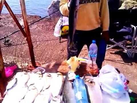 Ψάρεμα Μουδανιά
