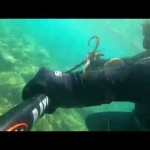 Ψαροντούφεκο χταπόδι 2015-octopus in Greece 2015