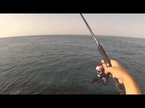 Ψάρεμα ζαργάνας (βελονίας) με ζωντανό δόλωμα(WATCH in HD 1080)