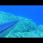Ψαροτούφεκο στην Κρήτη- Αυγ 15