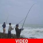 Ψάρεμα με καλάμι: Τι πρέπει να γνωρίζετε;