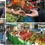 200 άδειες για πώληση πρωτογενών προϊόντων γης, αλιείας, ιχθυοκαλλιέργειας