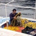 Απαγόρευση αλιείας στον τεχνητό ύφαλο Κίτρους
