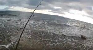 Spinning- Ψάρεμα Λαβράκι 1,5 Κ