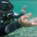 Κρήτη: Το μικρό ψαράκι που σαρώνει το facebook
