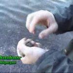 Ψάρεμα με πολυάγκιστρο
