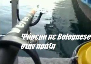 Ψάρεμα με Bolognese στην πράξη