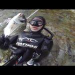 Ψάρεμα με ψαροντούφεκο σε βάθος… εκατοστών!