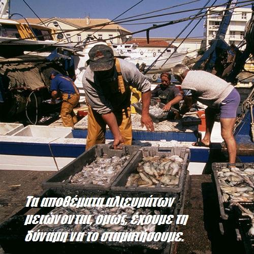 Τα αποθέματα αλιευμάτων μειώνονται, όμως έχουμε τη δύναμη να το σταματήσουμε.