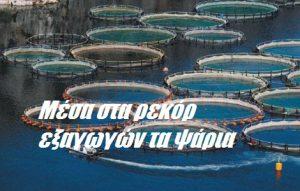 Μέσα στα ρεκόρ εξαγωγών τα ψάρια