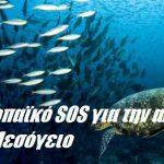 Ευρωπαϊκό SOS για την αλιεία στη Μεσόγειο
