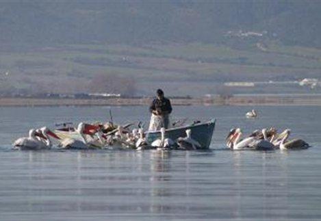 Απαγόρευση αλιείας στα εσωτερικά ύδατα Πιερίας ως 7 Ιουνίου