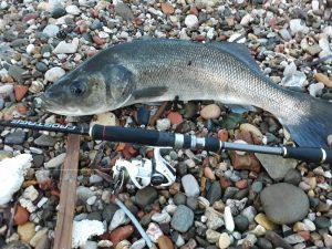 Ψάρεμα Λαβράκι