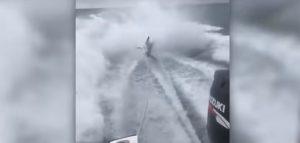 Απαράδεχτο!!! Βίντεο με ψαράδες που γελάνε ενώ σέρνουν καρχαρία
