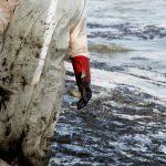 Τεράστια οικολογική καταστροφή στη Σαλαμίνα