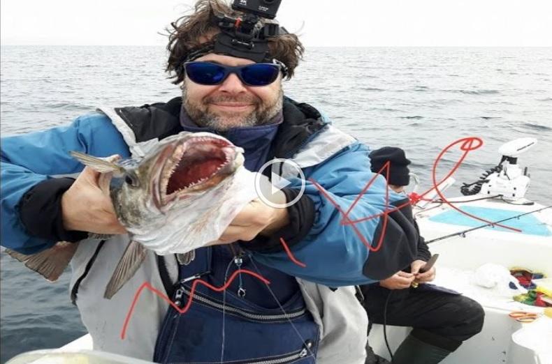 Ψάρεμα Μπακαλιάρου στην Χαλκιδική