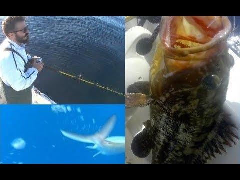 Ψαρεμα Slow Jigging – C&R Απελευθέρωση Μαγιάτικο & Ροφός