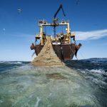 Πάνω από το ήμισυ των ωκεανών εκτεθειμένο στην επαγγελματική αλιεία