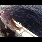 Όμορφα τα κόκκινα, μόνο όταν μιλάμε για ψάρια…