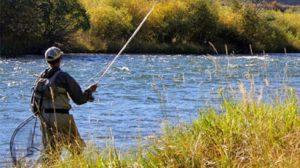 Απαγόρευση αλιείας για την προστασία της αναπαραγωγής των ψαριών