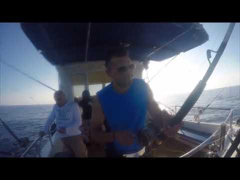 Το ψάρεμα του Τόνου
