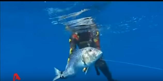 Ψαροντούφεκο: Έσπασε το παγκόσμιο ρεκόρ σε ψάρεμα συναγρίδας!