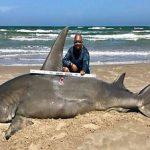 Ψάρεψε καρχαρία τεσσάρων μέτρων