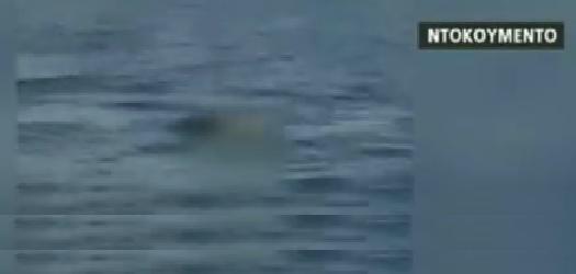 Ψαράδες εντόπισαν σορό γυναίκας 4 μίλια μακρυά από της ακτές