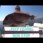 Μία ωραία στιγμή από ένα ψάρεμα στις Βόρειες Σποράδες.