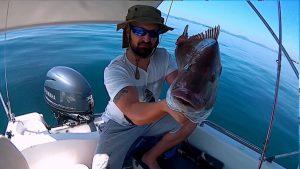 Ψάρεμα Φαγκρί 5.6 kg με fiiish black minnow
