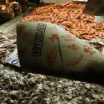 Έλεγχοι και δέσμευση αλιευμάτων σε 6 επιχειρήσεις στον Πειραιά